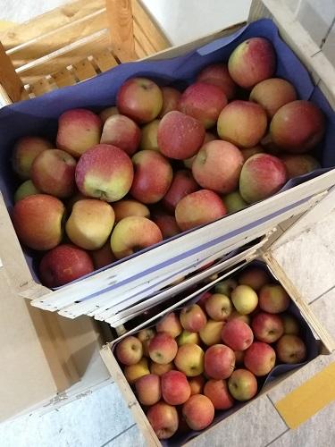 |NiceCoop| Pommes Saint Jaumes